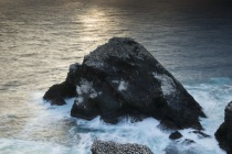 Hermaness, Shetland Isles